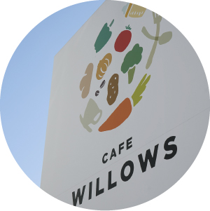 CAFE WILLOWS